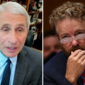 Why Fauci Is Lauding New York as a COVID-19 Success, and Why Rand Paul Isn't Buying It